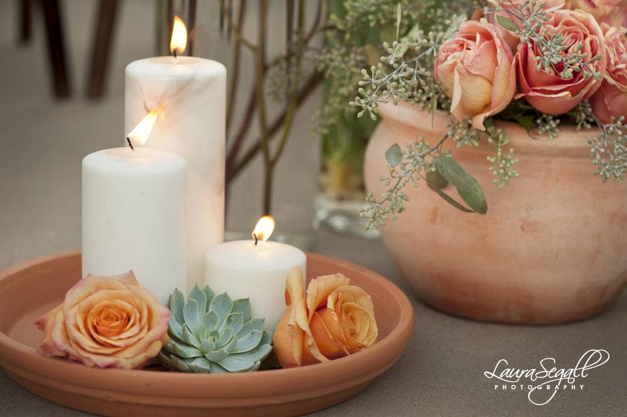Desert Botanical Garden Styled Shoot With Life Design