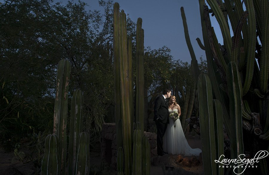 Desert Botanical Garden wedding pictures Phoenix, AZ