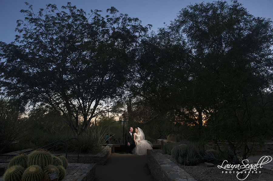 Desert Botanical Garden Phoenix photographer