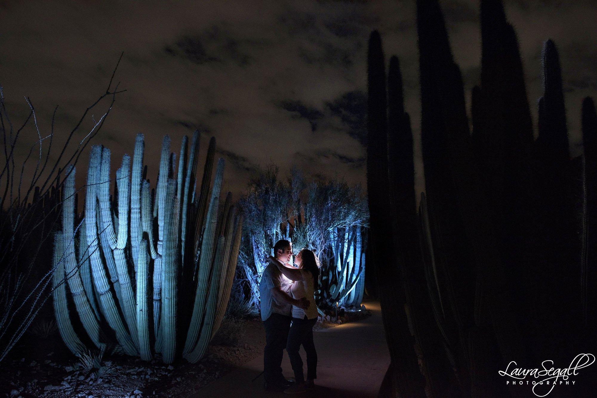 Desert Botanical Garden at night