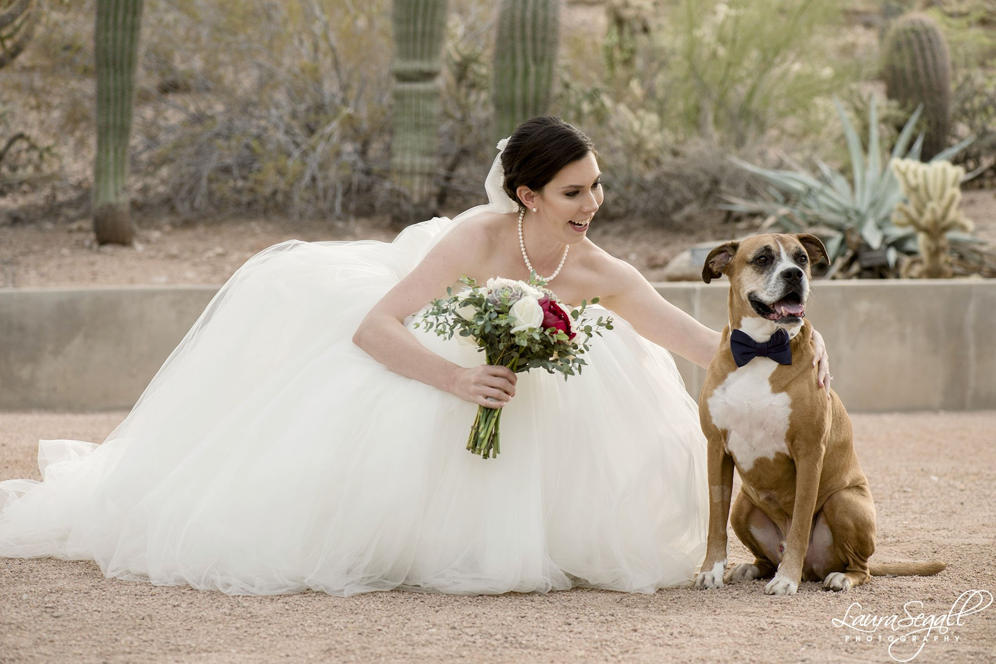 wedding dog and bride