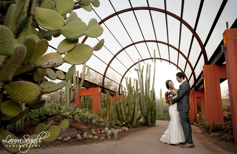 Nichole And Jj S Desert Botanical Garden Wedding